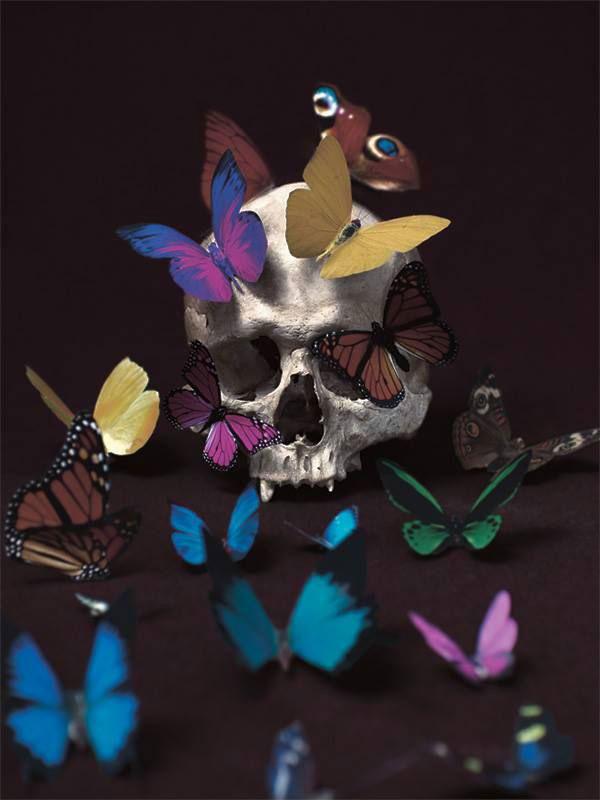 MarioMonforteButterflies