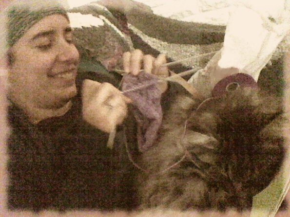 knitting socks with a cat